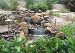 Pondless Waterfall with Rocks, Plants and Lighting